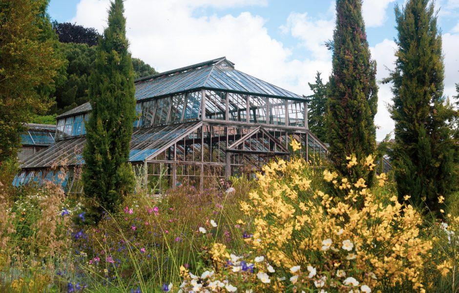 hotel near botanic gardens in cambridge